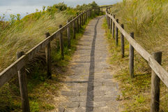 Path to the top. Of dune in the Netherlands Stock Photo