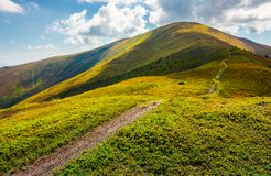 Path to the top of the mountain. Beautiful summer landscape. great destination to travel. location Velykyi Verkh peak of Borzhava ridge in Carpathian mountains Royalty Free Stock Image