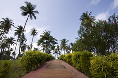 The path to the tropical vacation Royalty Free Stock Image