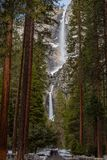 Path to Yosemite Falls royalty free stock image