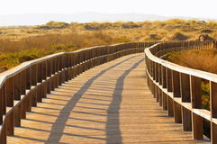 Path to you. Wood bridge in a natual park leading to the beach Royalty Free Stock Photo