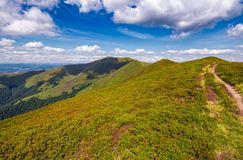 Path on top of Carpathian mountain ridge. Beautiful summer landscape under gorgeous sky with clouds Royalty Free Stock Images