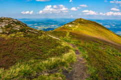Path through the top of mountain ridge. Path through the grassy meadows on top of mountain ridge. Classic late summer travel background in Carpathian alps Royalty Free Stock Photos