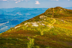 Path through the top of mountain ridge. Path through the grassy meadows on top of mountain ridge. Classic late summer travel background in Carpathian alps Stock Photos