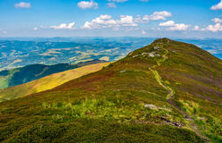Path through the top of mountain ridge. Path through the grassy meadows on top of mountain ridge. Classic late summer travel background in Carpathian alps Stock Image