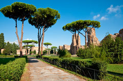 Path and trees from Caracalla springs at Rome Royalty Free Stock Photography