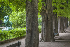 Path with trees, Luxembourg Garden, Paris Royalty Free Stock Images