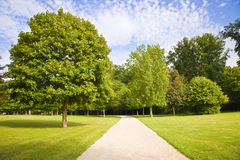 Path between trees and meadows Stock Photography