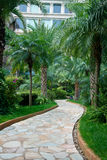 Path in tropical garden Royalty Free Stock Image