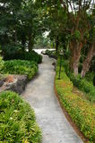 Path in Tropical Garden Stock Photography
