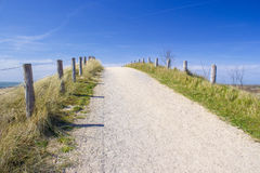 Path trough the dunes, Zoutelande, the Netherlands Royalty Free Stock Photo