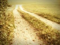 Path (25) Stock Image