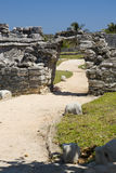 Path in the Tulum Ruins Stock Images
