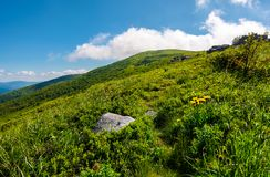 Path uphill in to the cloud. Lovely mountain landscape in summer. tourism and summer activities concept Stock Photos
