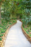 Path in Vertical composition. This path in a park.It's a very beautiful view Royalty Free Stock Photo