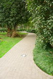 Path in Vertical composition. This path in a park.It's a very beautiful view Stock Image