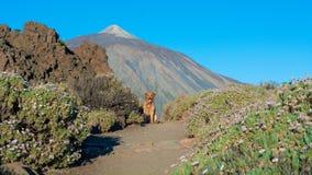 Path of volcanoes stock photos