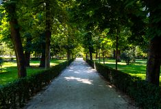 Free Path Walk Of A Park With Green Vegetation And Trees Royalty Free Stock Photos - 153559758