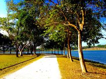 The Path. Walking along the tree shaded path I noticed how mesmerising this view is Royalty Free Stock Photos