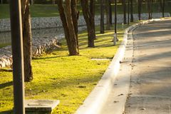 Path for walking in a beautiful Park. Path for walking in a beautiful Park at sunset Royalty Free Stock Photo