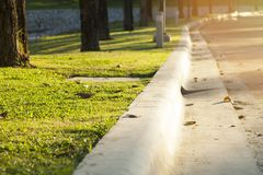 Path for walking in a beautiful Park. Path for walking in a beautiful Park at sunset Royalty Free Stock Image