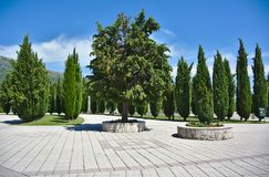 A path or a walkway in a landscaped area that is bordered by trees. Summertime Stock Photography