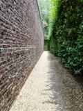 Path, Wall, Leaf, Tree royalty free stock photo