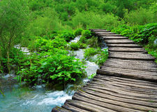 Path and waterfall in Plitvice Park Stock Photography
