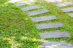 The path way in the garden Royalty Free Stock Photography