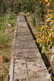 Path way in garden surrounded by autumn leaf Stock Photography