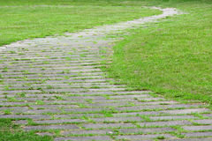 Path way on grass Royalty Free Stock Photography