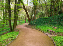 Path way in green city park in spring Royalty Free Stock Photography
