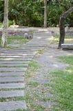 Path way in nature garden Stock Photos