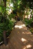 Path way and nature in Hatyai Stock Photo