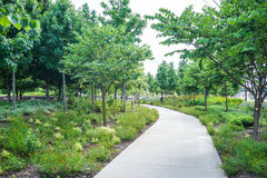 Path way in a park with green trees, Cincinnati, Ohio. Path at Smale Front River Park in Cincinnati, Ohio Stock Images