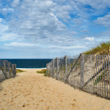 Path way to the beach at Cape Cod Stock Photography