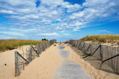 Path way to the beach at Cape Cod Royalty Free Stock Photos