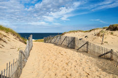 Path way to the beach at Cape Cod. Massachusetts, USA Royalty Free Stock Images