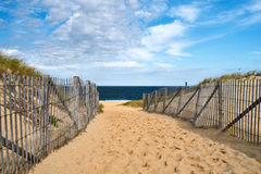 Path way to the beach at Cape Cod Stock Images