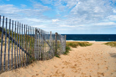 Path way to the beach at Cape Cod Royalty Free Stock Photo
