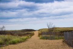 Path way to the ocean. A path through the sand dunes leading to the ocean Stock Images