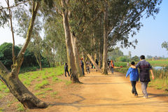 Path in the western part of Nam Sang Wai, stock photo