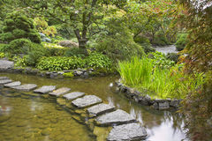 Path from wet stones. Stock Photography