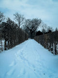 Path in winter with footprints. Cloudy weather Stock Photo