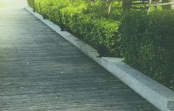 Path with wood board. Floor in park Royalty Free Stock Image