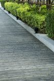 Path with wood board. Floor in park Stock Photos