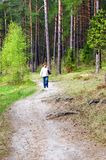 The path in the woods Royalty Free Stock Images
