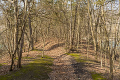 Path through the woods. The path through the woodlands in Matthiessen State Park, Utica, Illinois at the beginning of Spring Stock Images
