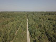 A path in the woords filmed with a drone. A path in a forest in Munich, filmed from the top with a drone royalty free stock photography