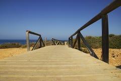 Pathaway on coast. Pathaway in wood on spanish coast Royalty Free Stock Image